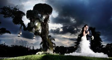 Lanterne per le nozze