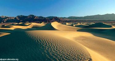 Nozze Nel Deserto