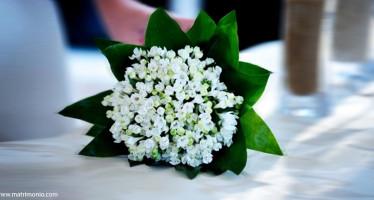 Bouquet di Bouvardia