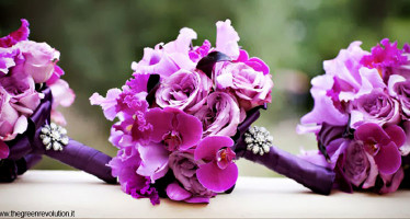 Bouquet Orchidee Fucsia