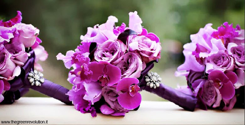 Bouquet Sposa Fucsia.Bouquet Orchidee Fucsia Fotografo Matrimonio Napoli Diego