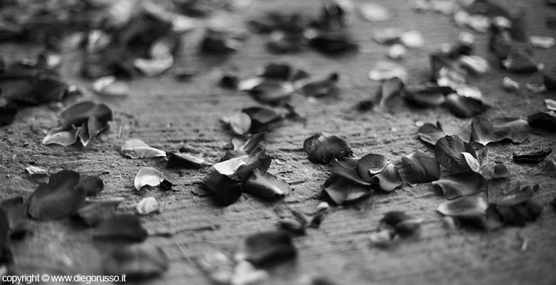 Très Le foto in bianco e nero | Fotografo Matrimonio Napoli | DIEGO  BW65