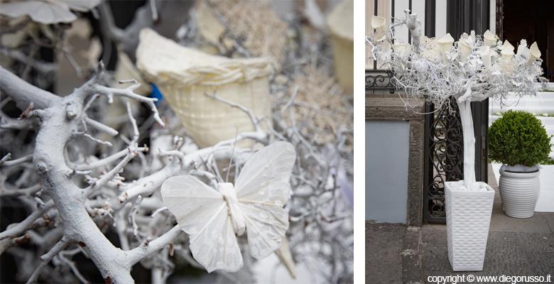 Souvent L' albero dei coni portariso | Fotografo Matrimonio Napoli | DIEGO  BU95
