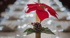 Centrotavola a tema; il Natale