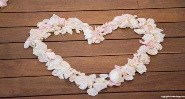 foto decorazioni da matrimonio