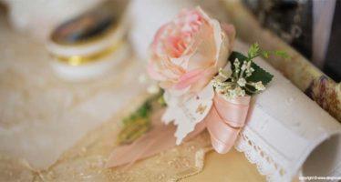 Un amore di rosa