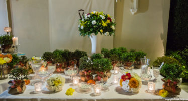 Wedding: bomboniere ecologiche