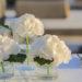 Wedding: il discorso