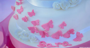 Cake: tema farfalle