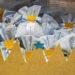 Nascita: i confetti