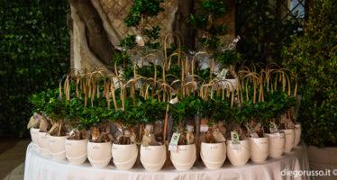 Bomboniera da matrimonio: bonsai