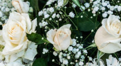 Rose bianche matrimonio