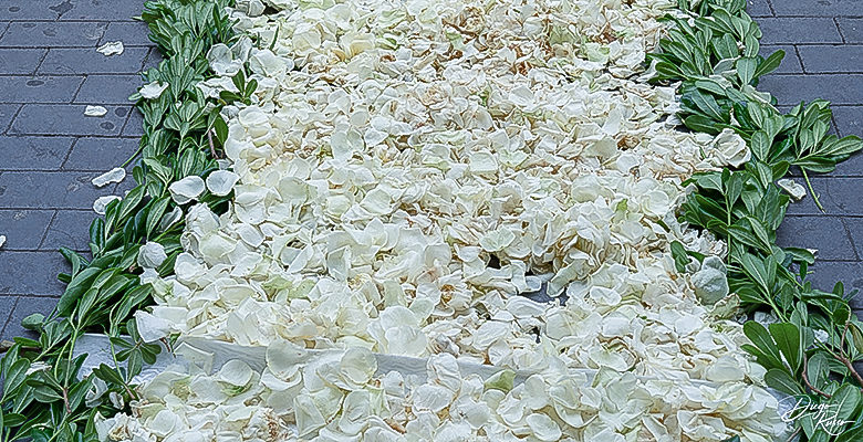 Tappeto nuziale di fiori bianchi
